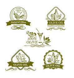 Olive oil bottle and olives icons vector