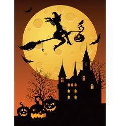 Witch on a broomstick vector