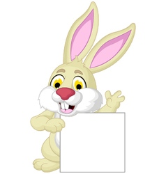rabbit cartoon posing with blank sign vector image
