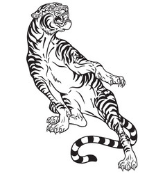 tiger tattoo black white vector image