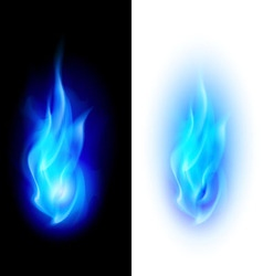 Fire flames vector image vector image
