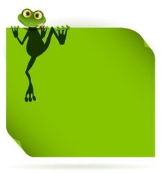 frog on a green leaf vector image vector image
