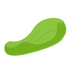 bottle gourd icon cartoon style vector image