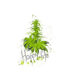 Cannabis bush hemp or marijuana or hashish or vector