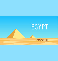 Pyramids egypt and camels at sunny day vector