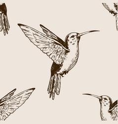 Humming bird seamless pattern engraving vector