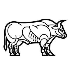 belgian blue bull vector image