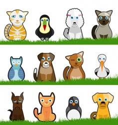 pet animals vector image