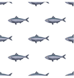 seamless pattern flat herring fish isolated on vector image vector image
