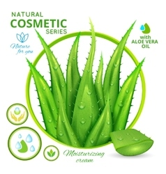 Aloe Vera Natural Cosmetics Poster vector image