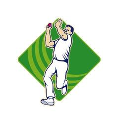 Cricket Bowler Bowling Ball Front vector image