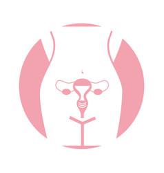 Female reproductive organ icon vector