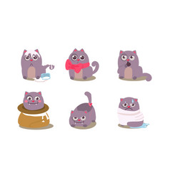 funny grey cat in different situations with vector image