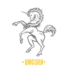 Image heraldic unicorn vector