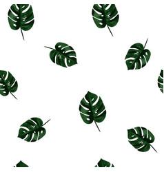 monstera pattern vector image