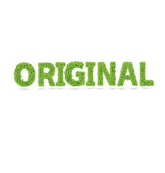Original word made of green leafs vector