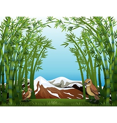 A bamboo forest view vector image vector image