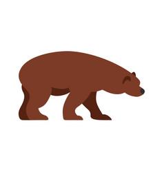 bear icon flat style vector image