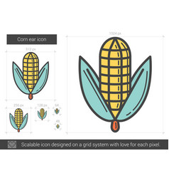 Corn ear line icon vector