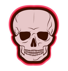 red skull drawing by hand vector image
