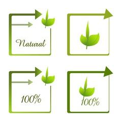 100 natural vector image vector image