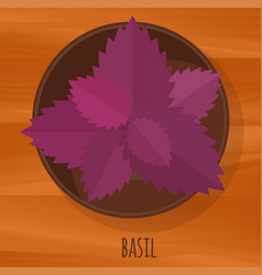 basil flat design icon vector image