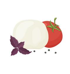 Caprese salad set italian cheese mozzarella vector