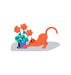 cute kitten play near houseplant vector image