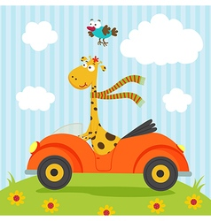Giraffe and bird go by car vector