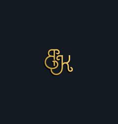 Luxury fashion initial letter bk logo vector