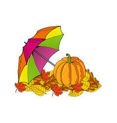 pumpkin and colorful umbrella on leaves vector image