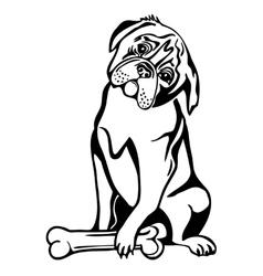 sitting dog and bone vector image