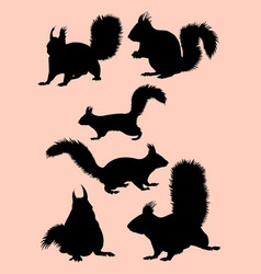 Squirrel animal mammal silhouette vector