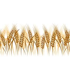Wheat seamless3 vector