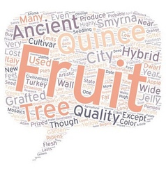History of quince text background wordcloud vector