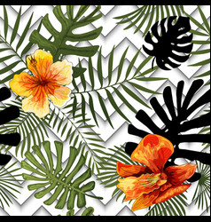 beautiful flowers tropical abstract color leaves vector image