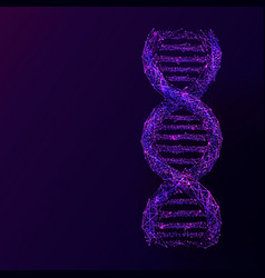 dna link low poly purple on darck bg vector image