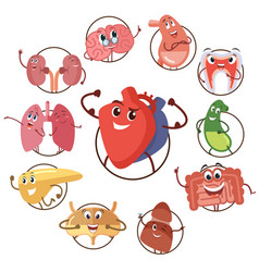 funny medical icons organs heart lungs vector image