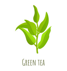 Green tea leaf icon cartoon style vector