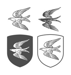 heraldic shields with bird vector image
