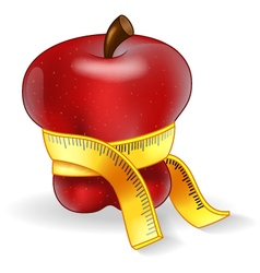 Red Apple With Measurement vector image