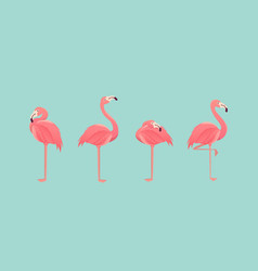 set flamingos isolated on background vector image