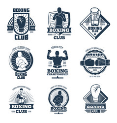vintage boxing sports club labels vector image