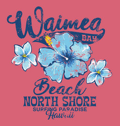 north shore waimea bay surfing paradise vector image