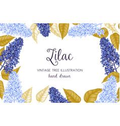 Design with lilac tree sketch vector