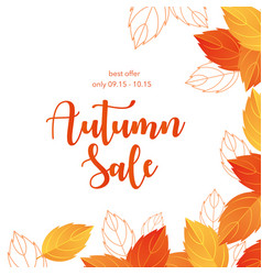 Autumn sale lettering cartoon vector