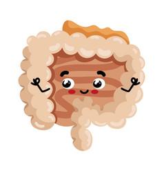human intestine cute cartoon character vector image