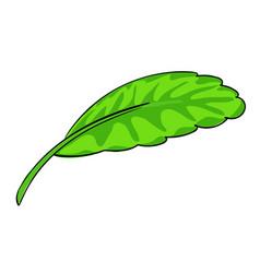 Lettuce leaf icon cartoon style vector
