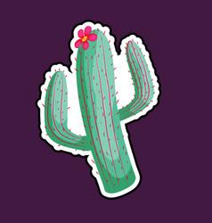 mexican cartoon cactus vector image