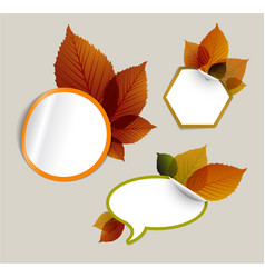 Set of autumn discount tickets labels stamps vector